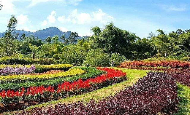 Dusun Bambu: Taman Arimbi Bandung. Sumber: Wisata kaka