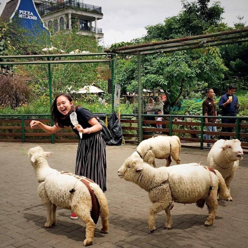 Farmhouse Bandung - AkuTravel. Sumber: Brisik