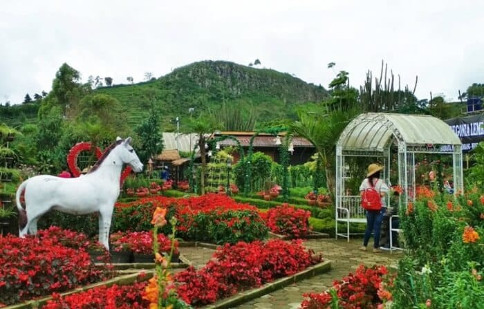 Taman Begonia - AkuTravel. Sumber: Native Indonesia