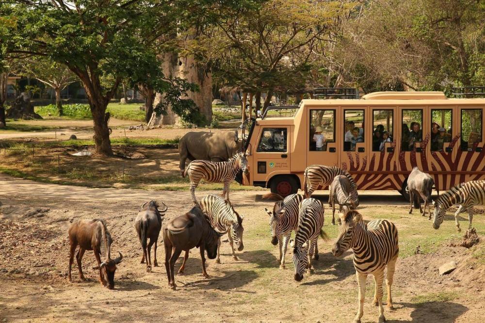 Taman Safari – AkuTravel. Sumber: Good News From Indonesia